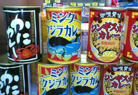 Minke_whale_curry