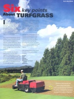 Six_points_turfgrass