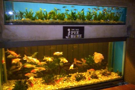 Seafood_toilet