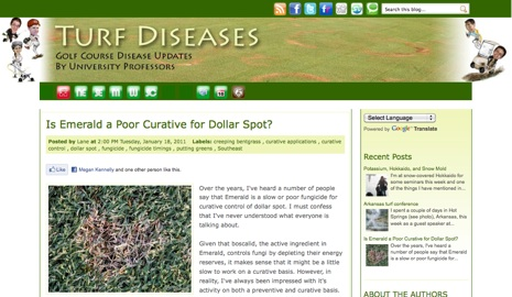 Turfgrass_diseases
