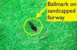 Ballmark