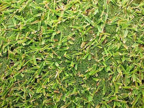 Moss-korai