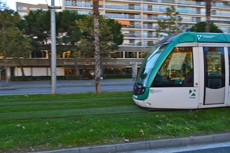 Tram-grass