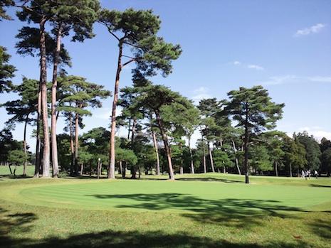 Tree_shade