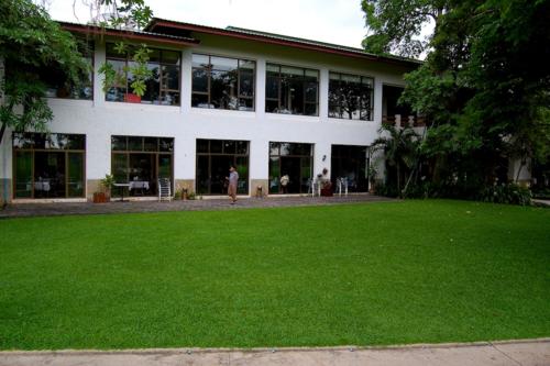 Bangsai_lawn